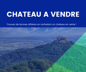 chateau a vendre